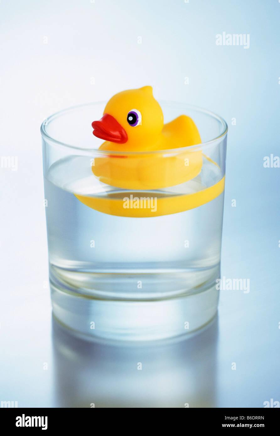 Pato De Juguete Flotando Sobre El Agua Dentro De Un Vaso De Agua Fotografía De Stock Alamy