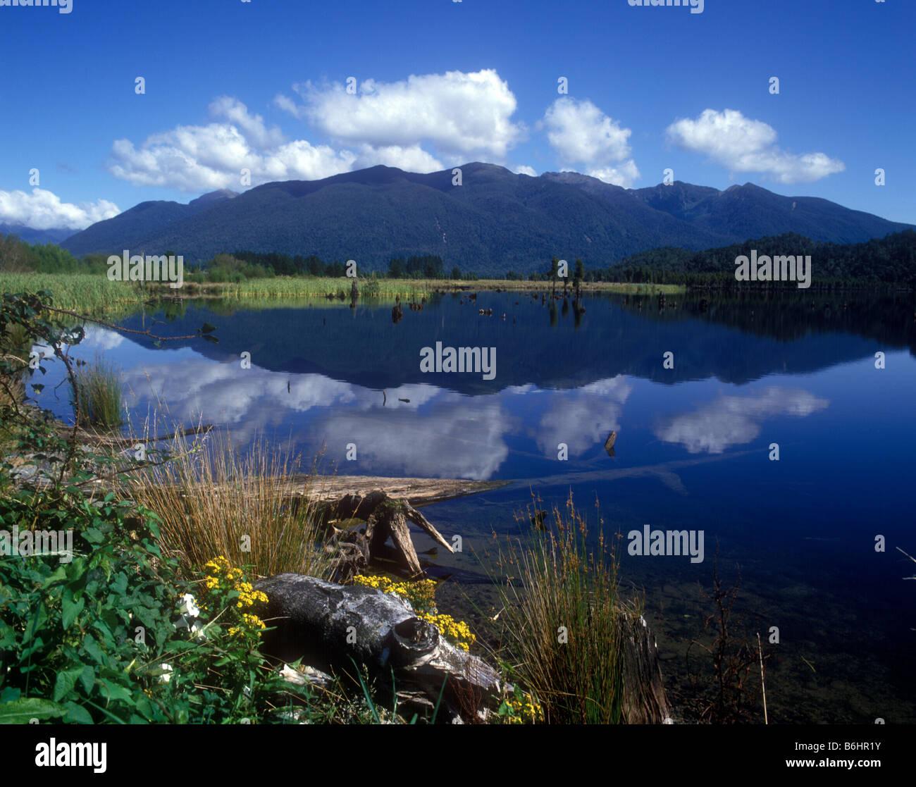 Bellos reflejos en el lago Poerua, un lago poco profundo en la región de la costa oeste de la Isla Sur Foto de stock