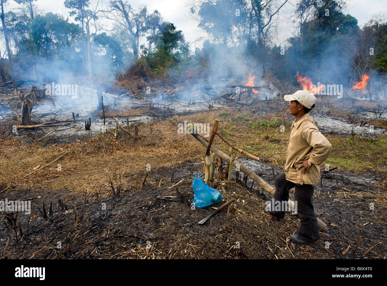 El hombre controlar la tala de bosques para el cultivo de la tierra en las zonas rurales del sur de Laos, Sudeste Imagen De Stock