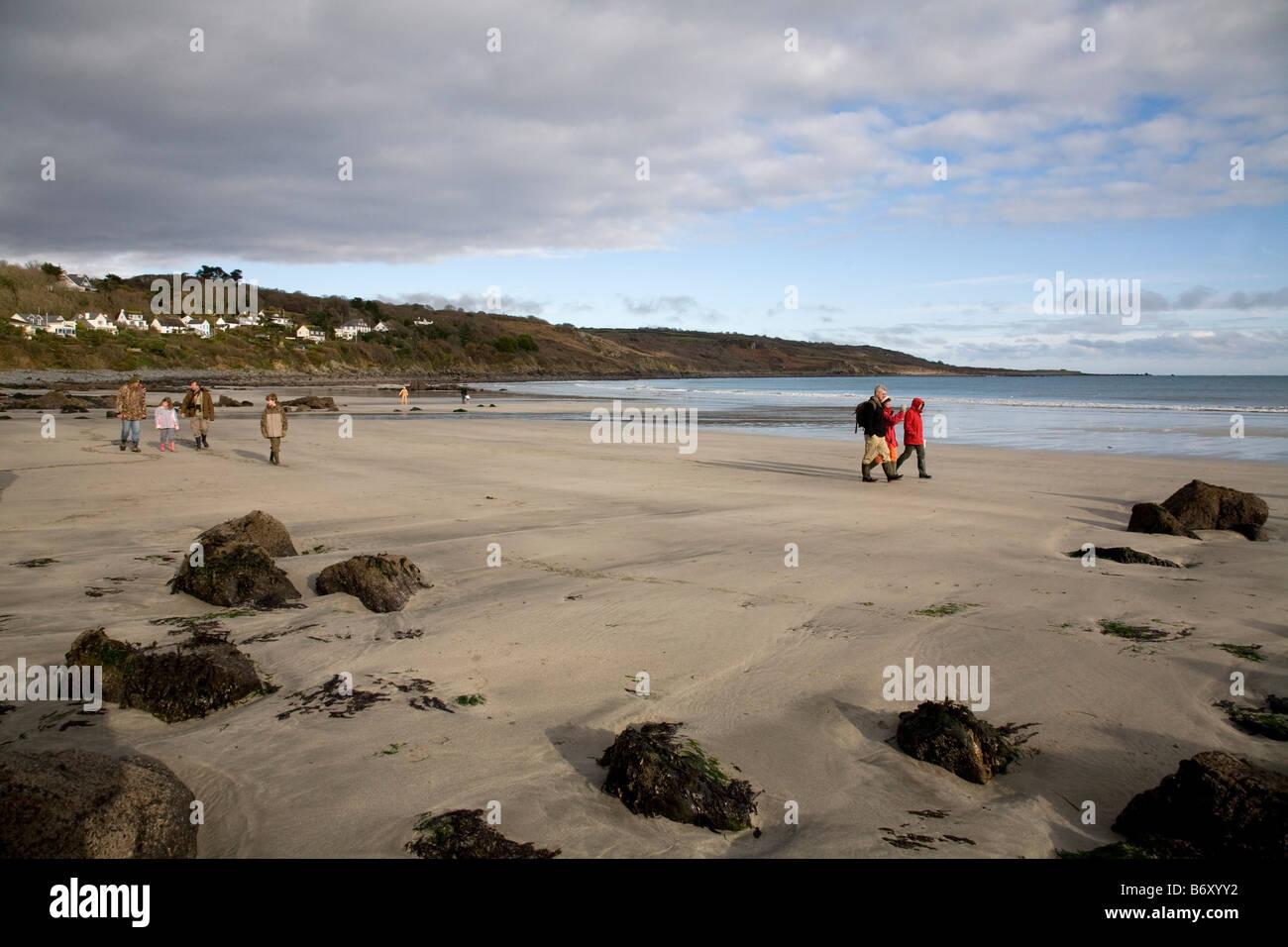 Excursión Geología coverack beach cornwall Imagen De Stock