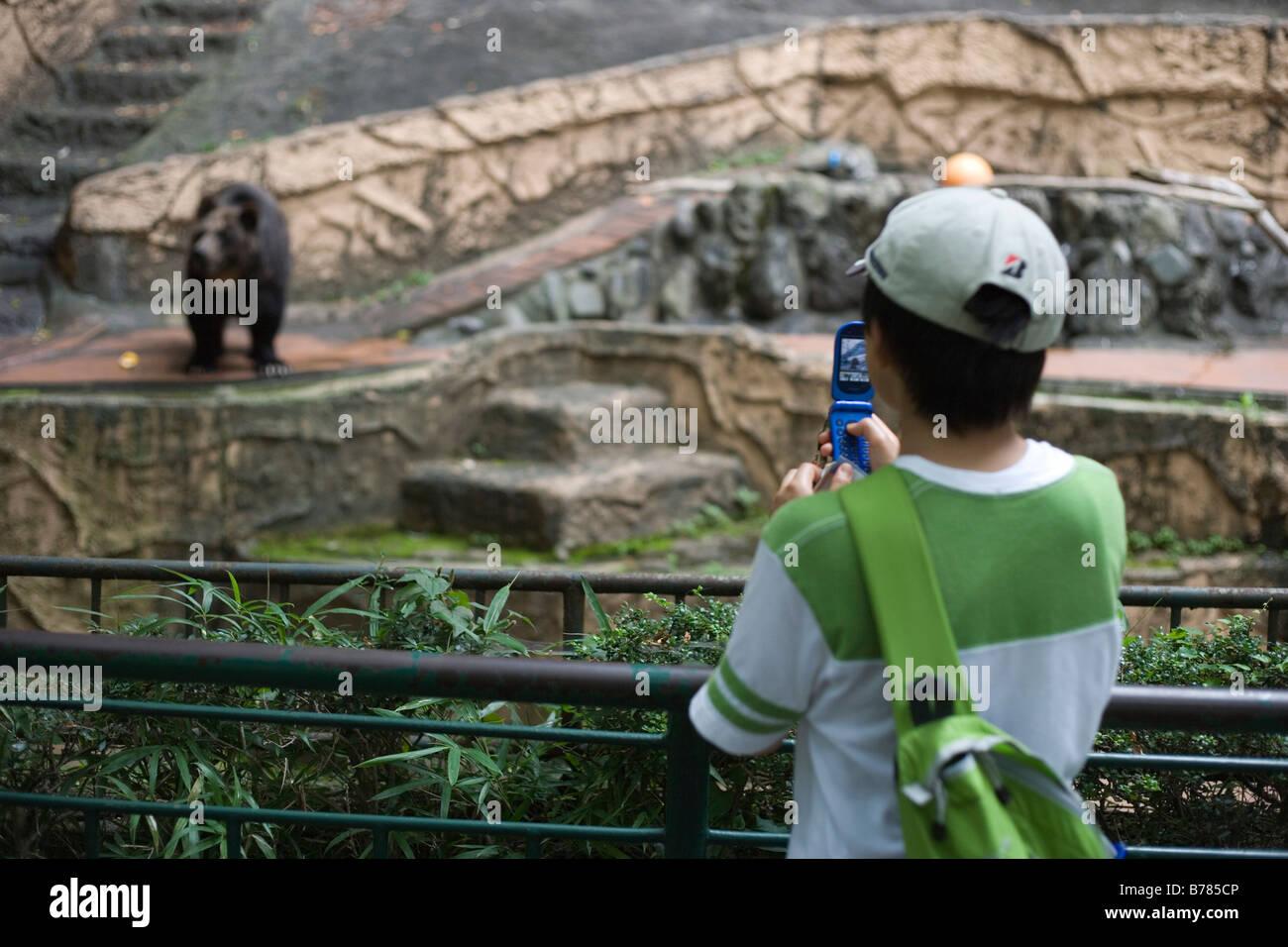 Los jóvenes japoneses niño tomando la imagen de oso en el zoo de Tokio utilizando su teléfono celular Foto de stock