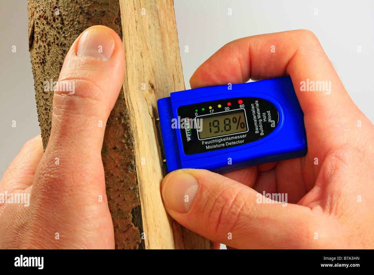 Medir el contenido de humedad de leña con un instrumento de medición, el valor óptimo del 20% aprox. Imagen De Stock