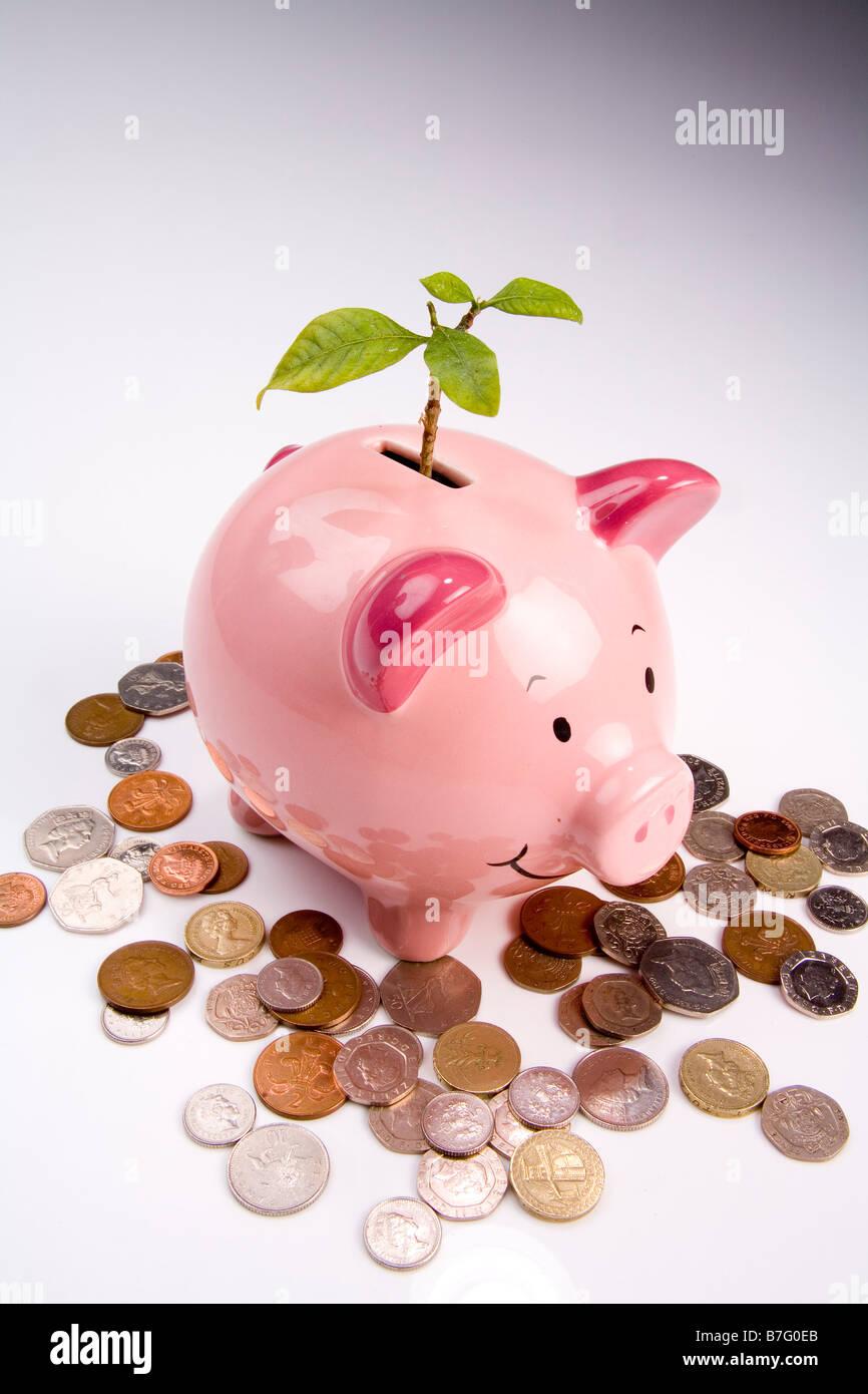 Brotes verdes de recuperación financiera Imagen De Stock