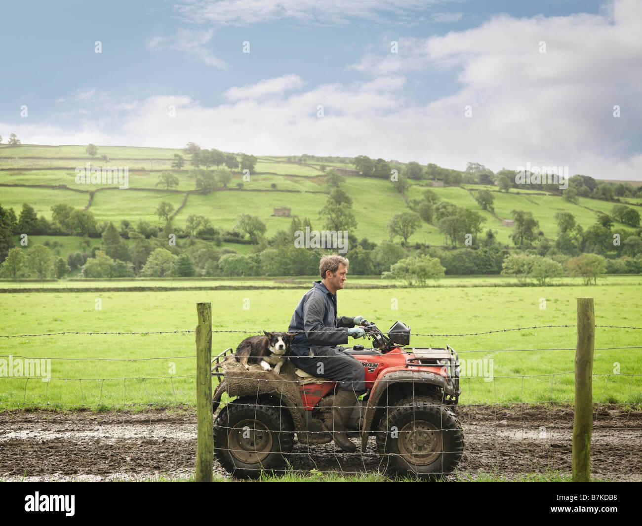 El agricultor y el perro en el tractor Imagen De Stock