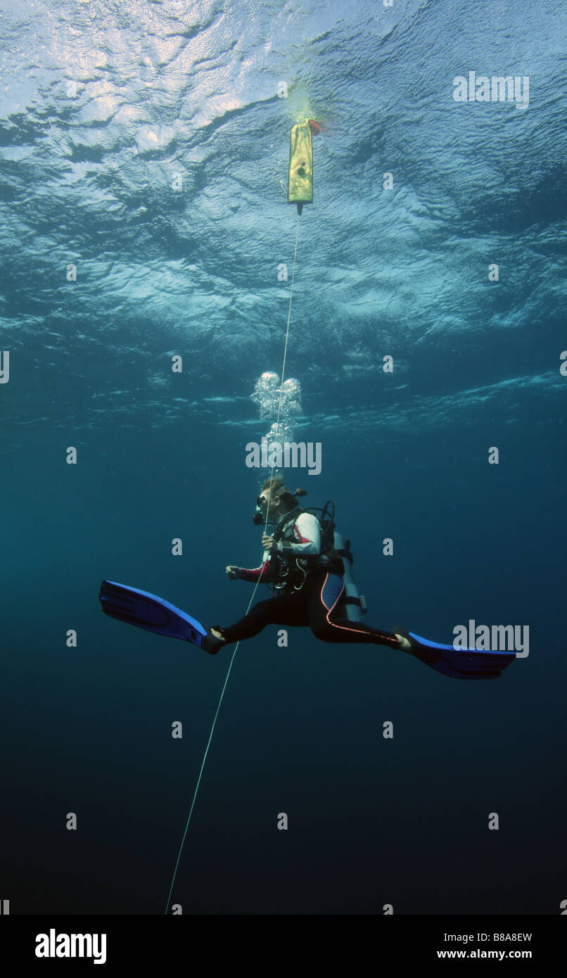 Diver sobre un tope de seguridad Foto de stock