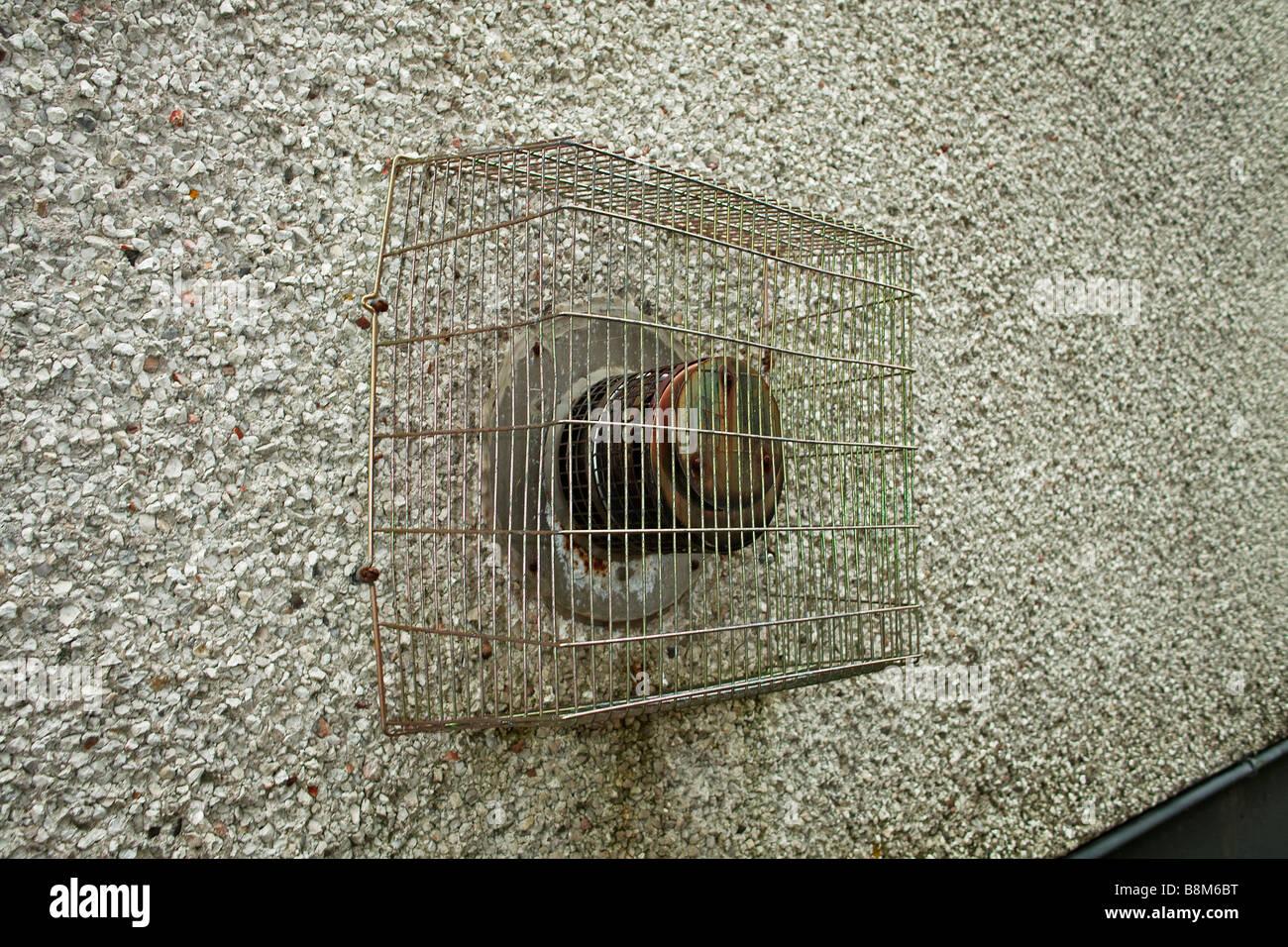 Un sistema de calefacción del ventilador del extractor en una pared exterior de una casa en Inglaterra Imagen De Stock