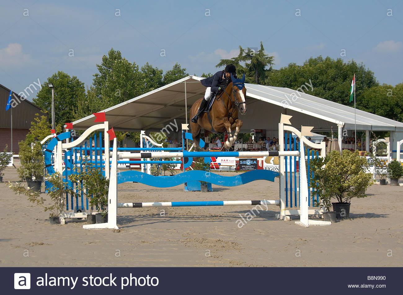 Show Jumping Imagen De Stock