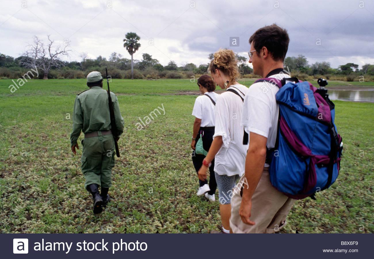 Reserva de caza Selous, safari, Tanzania, África Imagen De Stock