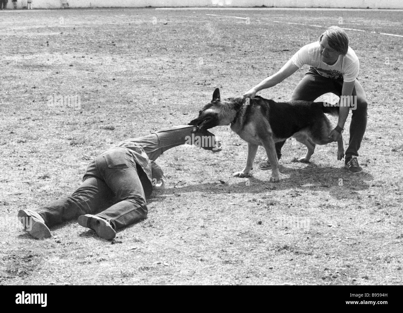 Un instructor con el Amigo amantes de los animales la sociedad formación un perro rastreador Imagen De Stock