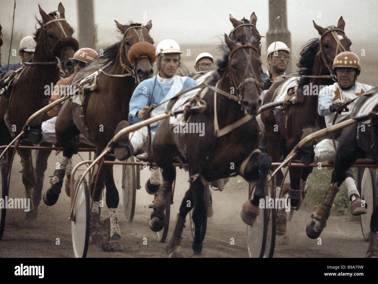 Un calor en el Hipódromo de Moscú Imagen De Stock