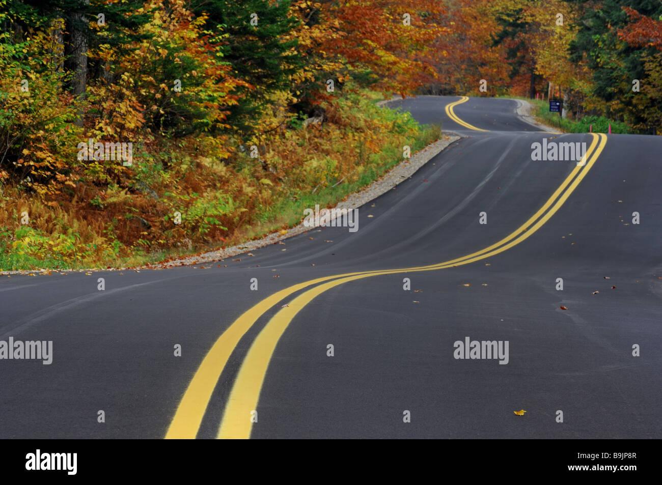 Bosque de la calle otoño USA Vermont Latina árboles pasaron por ...