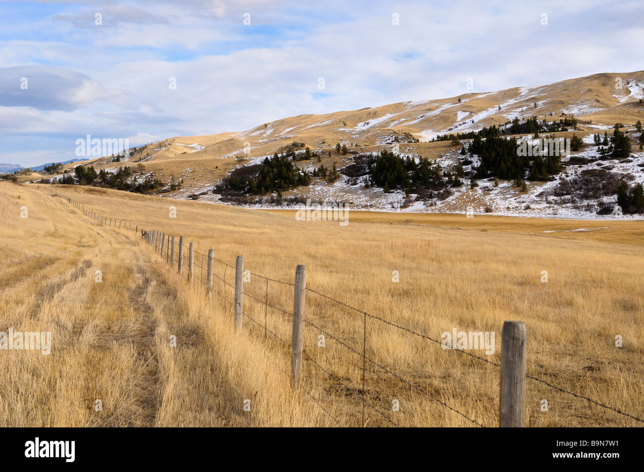 Los pastos en Bozeman pass en old boseman hill road, Montana, EE.UU. Imagen De Stock