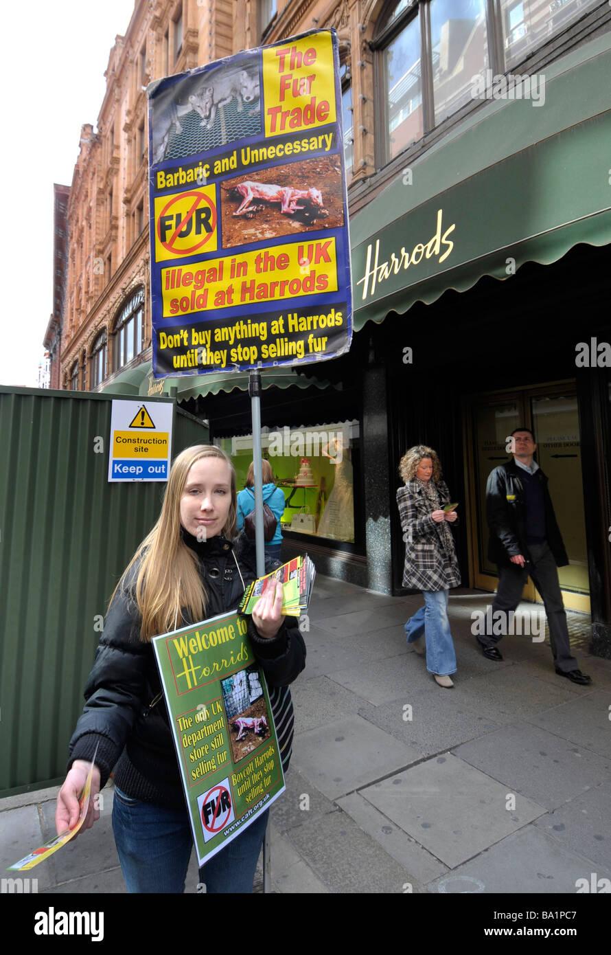 Anti pieles manifestante ventas fuera de Harrods, Londres, Inglaterra, Reino Unido Imagen De Stock