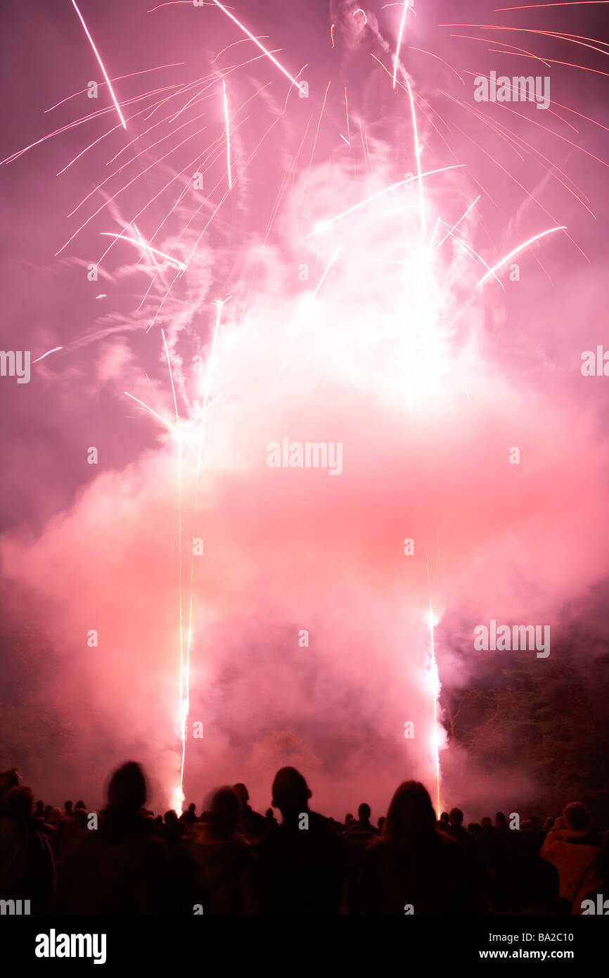 Fuegos artificiales por la noche Foto de stock