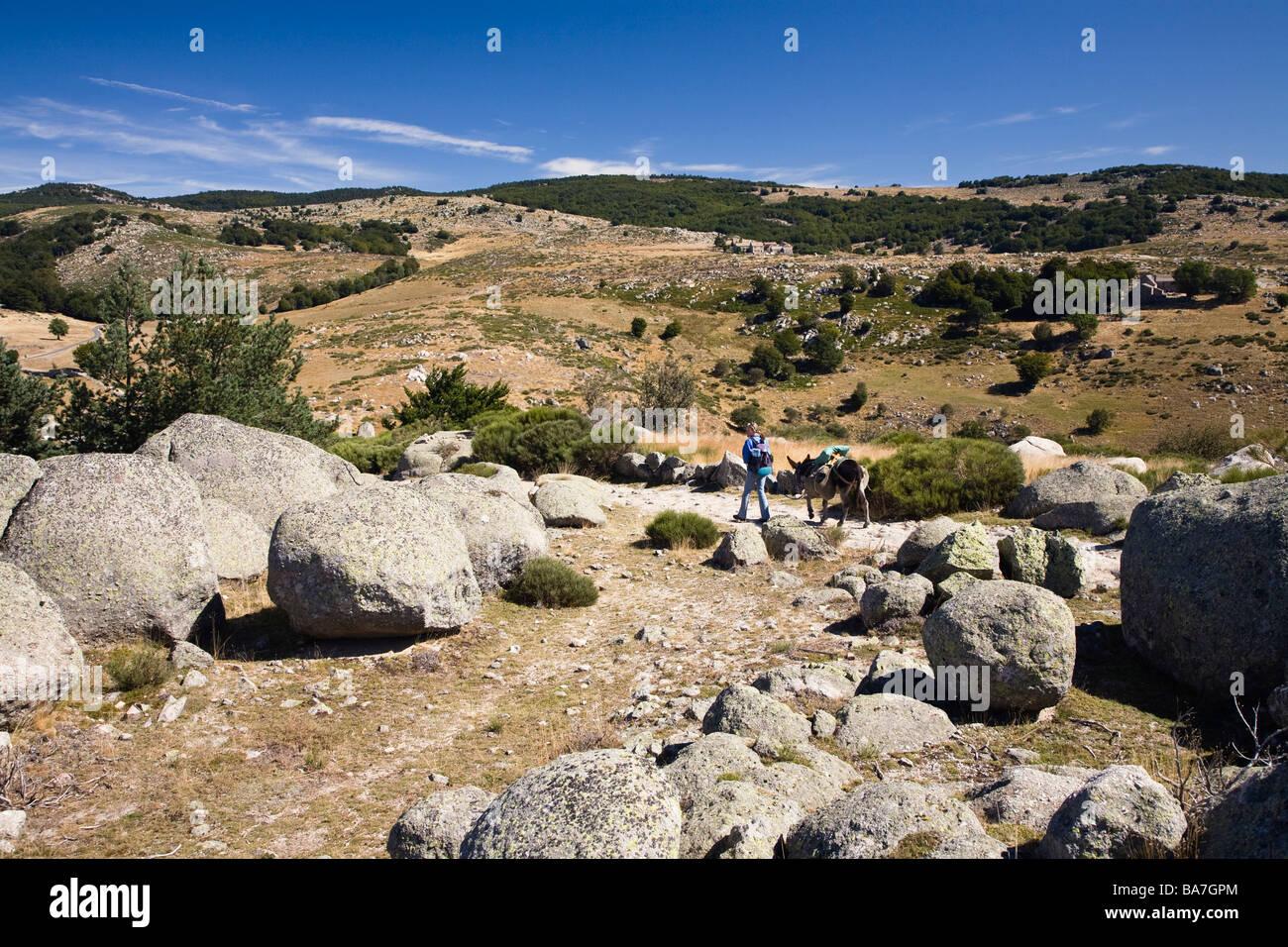 Mujer en una caminata, excursión con un burro en las montañas de Cévennes, Cevennen, Francia Imagen De Stock