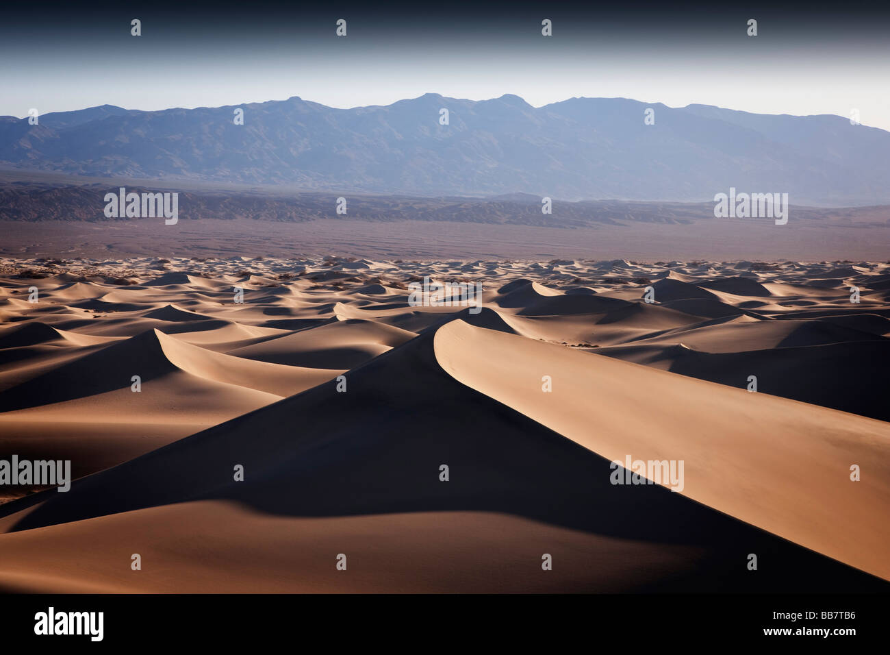 El Mesquite dunas de arena en el Parque Nacional Valle de la Muerte en California, EE.UU. Foto de stock
