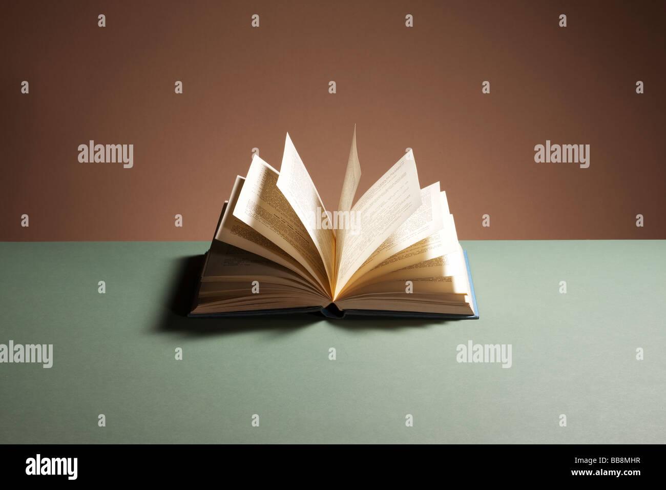 Abrir libro de tapa dura Imagen De Stock