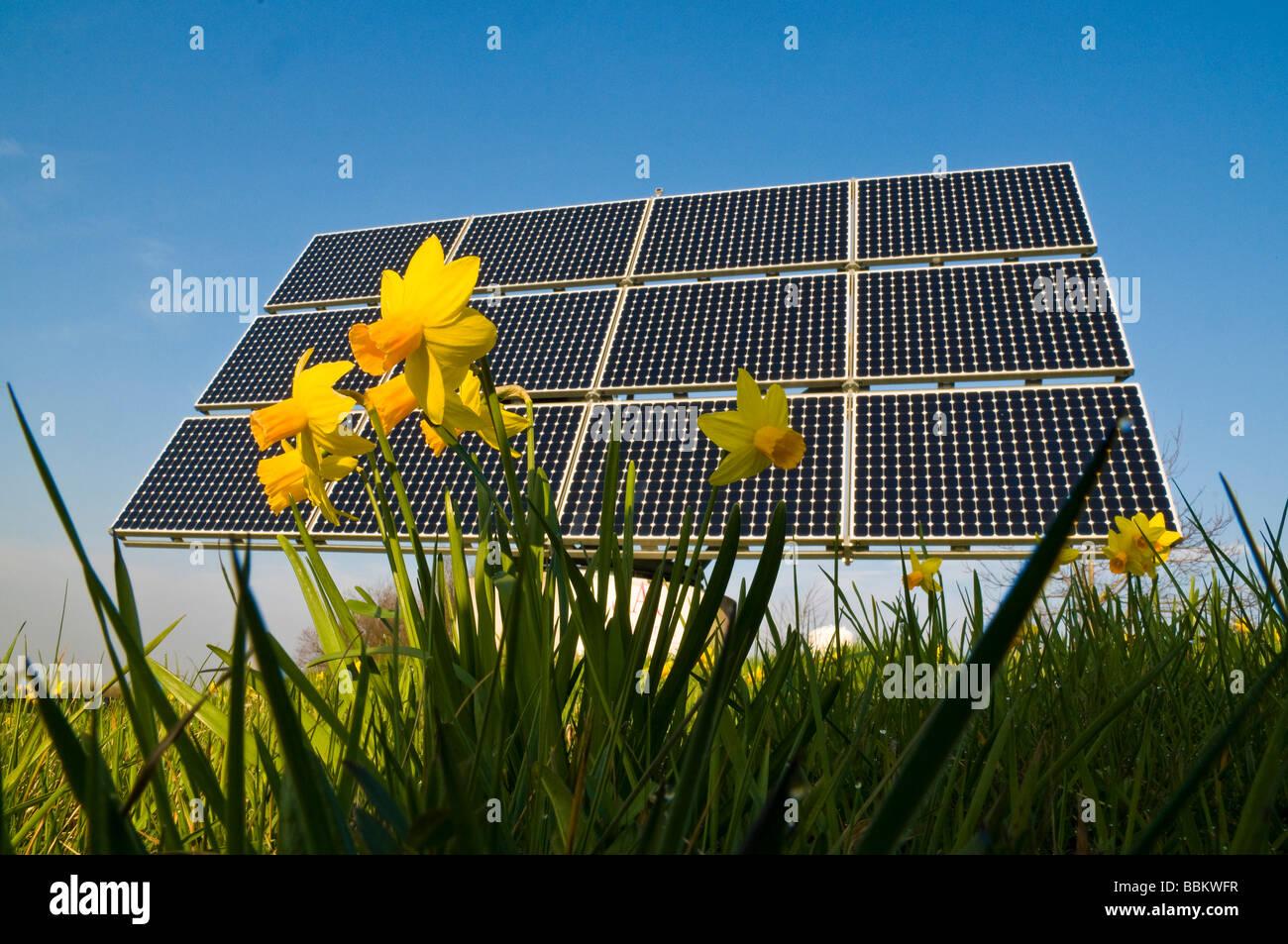 Los Módulos Solares Con Flores En Primer Plano Desde Abajo