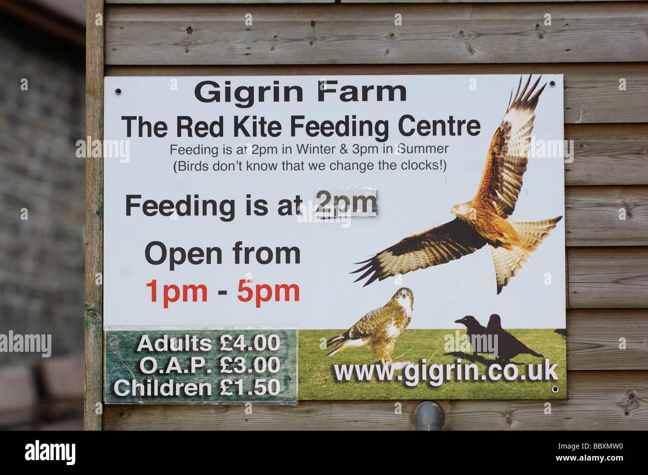 Red Kite Milvus milvus firmar para alimentar la estación fotografiado en Gales Foto de stock