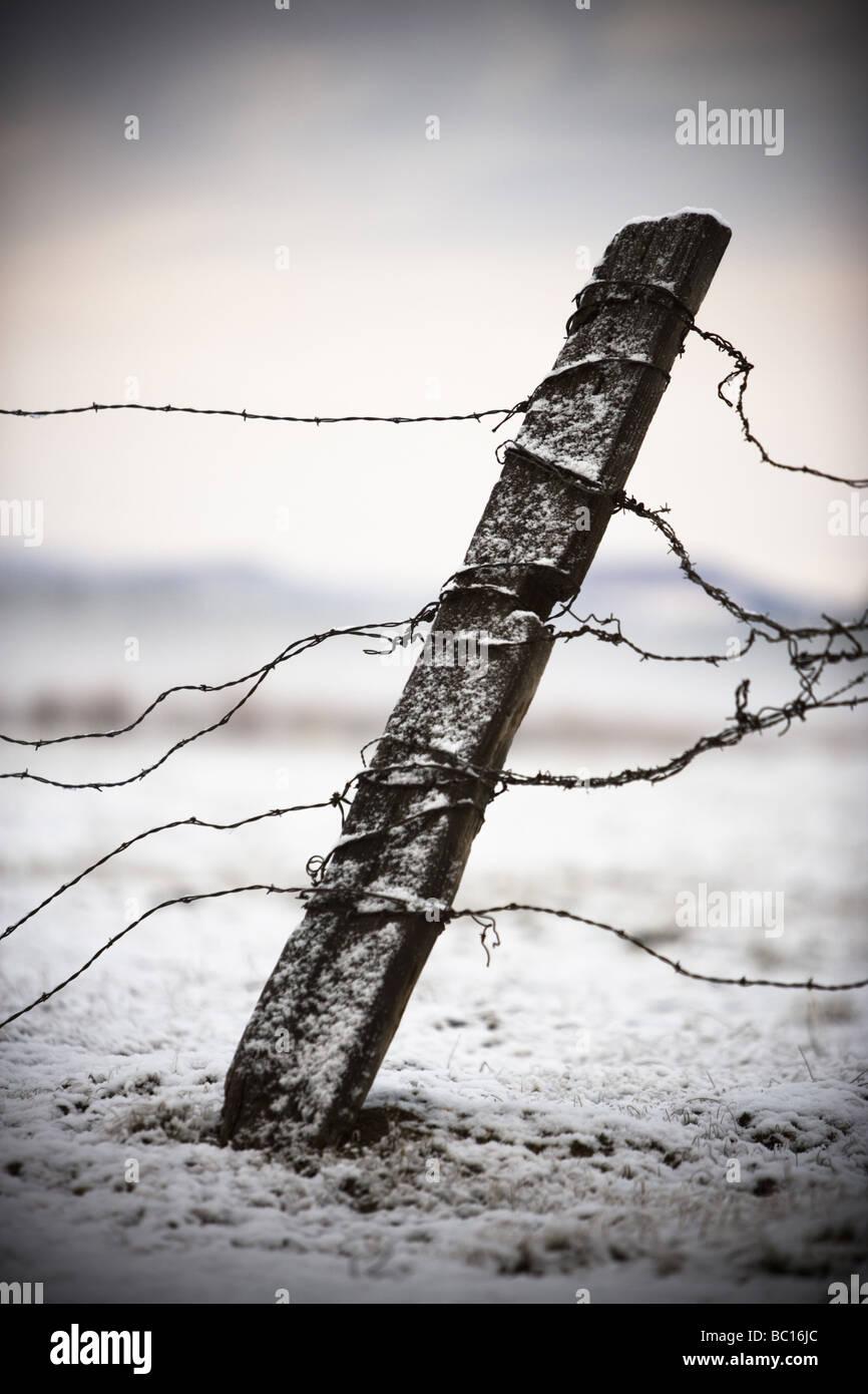 Antiguo vallado y alambre de púas en la nieve. Foto de stock