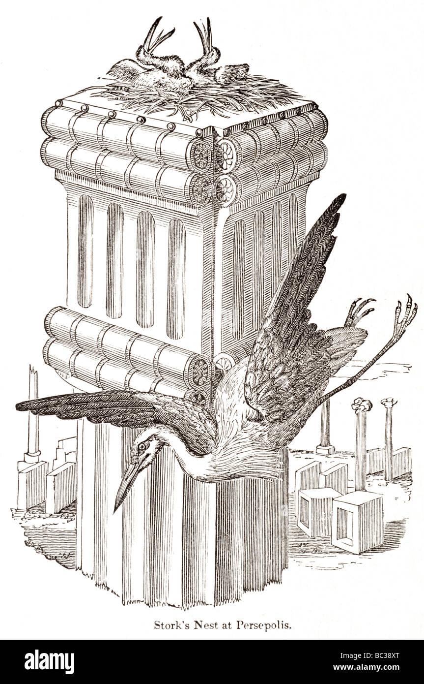 Stork s nest en Persépolis Foto de stock