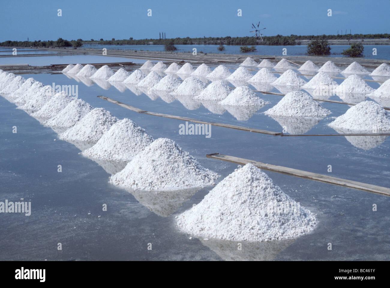 Montones de sal recogida en una laguna salina Samut Songkhram Tailandia Imagen De Stock