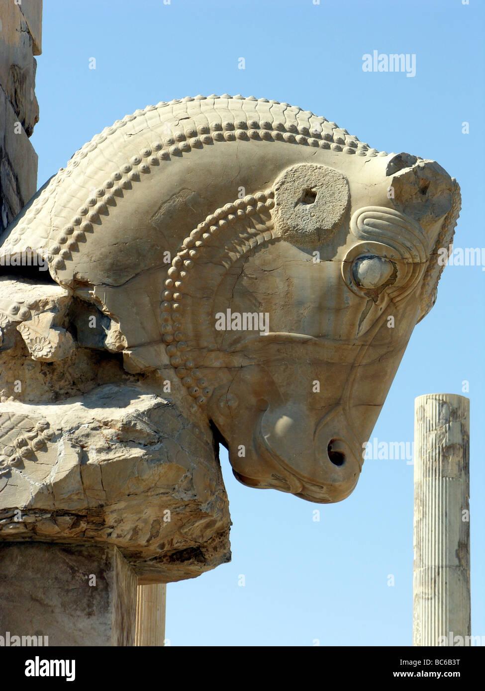 Estatua de cabeza de toro en Persépolis, Irán Foto de stock