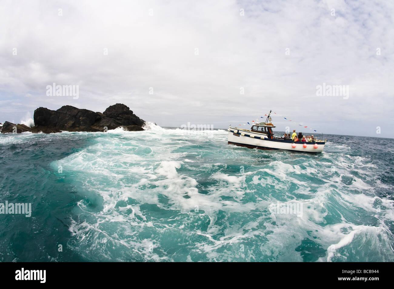 Viaje en barco Seahorse Seal Island St Ives Riviera Cornualles Cornualles Inglaterra Reino Unido GB Gran Bretaña Imagen De Stock