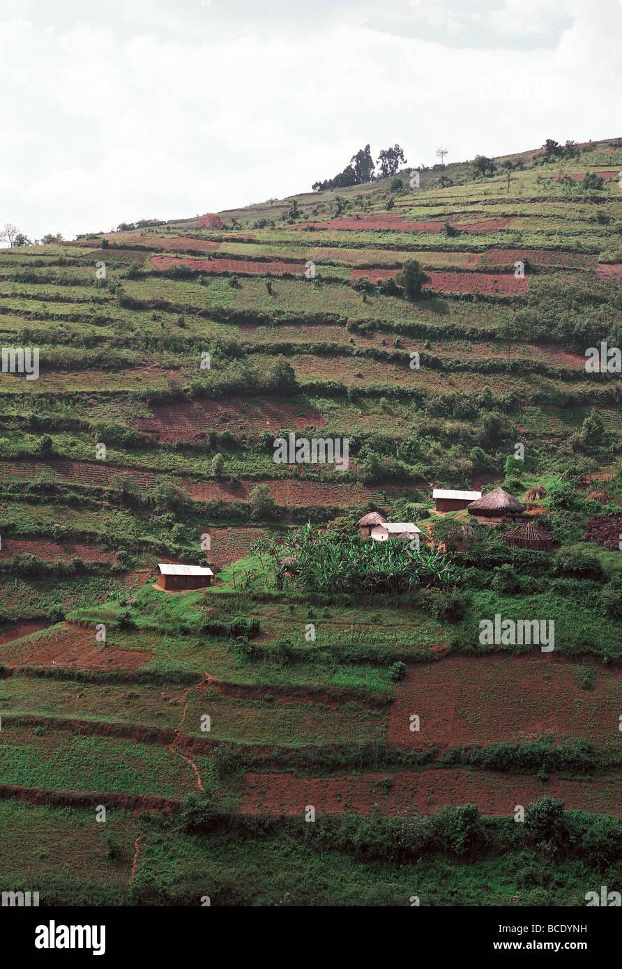 Terrazas Para La Agricultura De Pequeña Escala En La Región