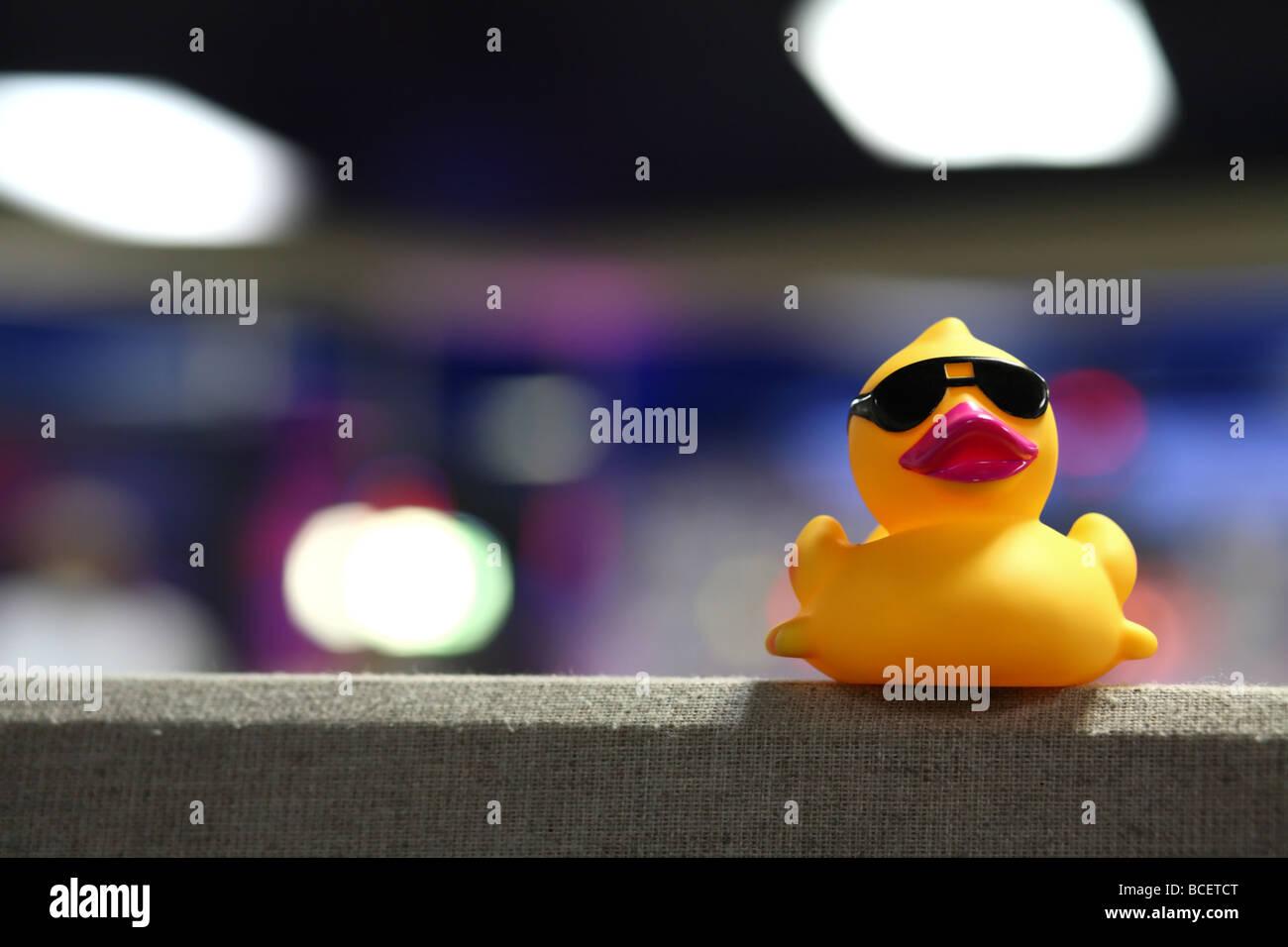 7023a1ff18 Este es un pato de goma con gafas de sol sentado en la parte superior de un  armario de oficina partición.