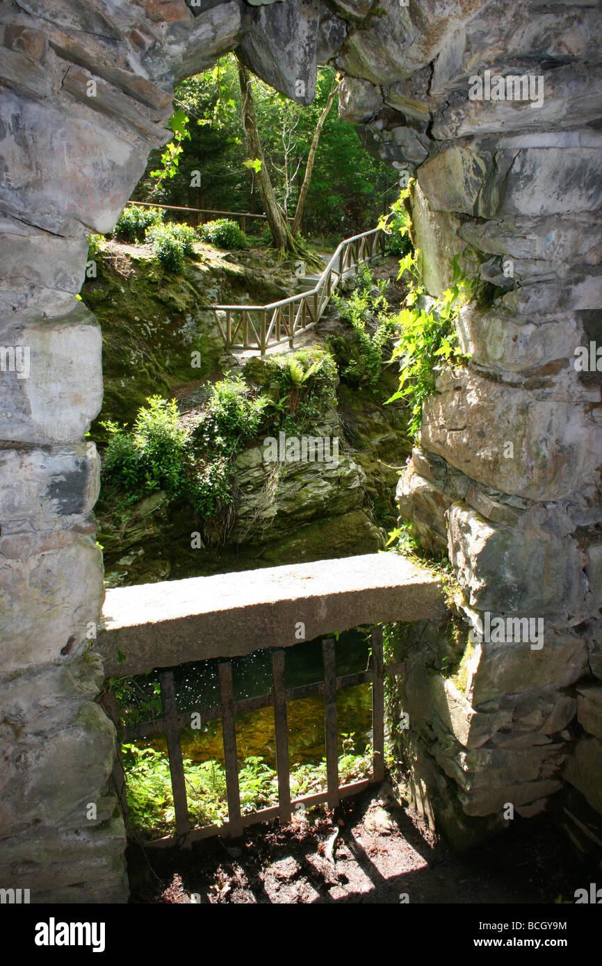 Mirando desde la ermita en Tollymore Park, Condado de Down, Irlanda del Norte Foto de stock