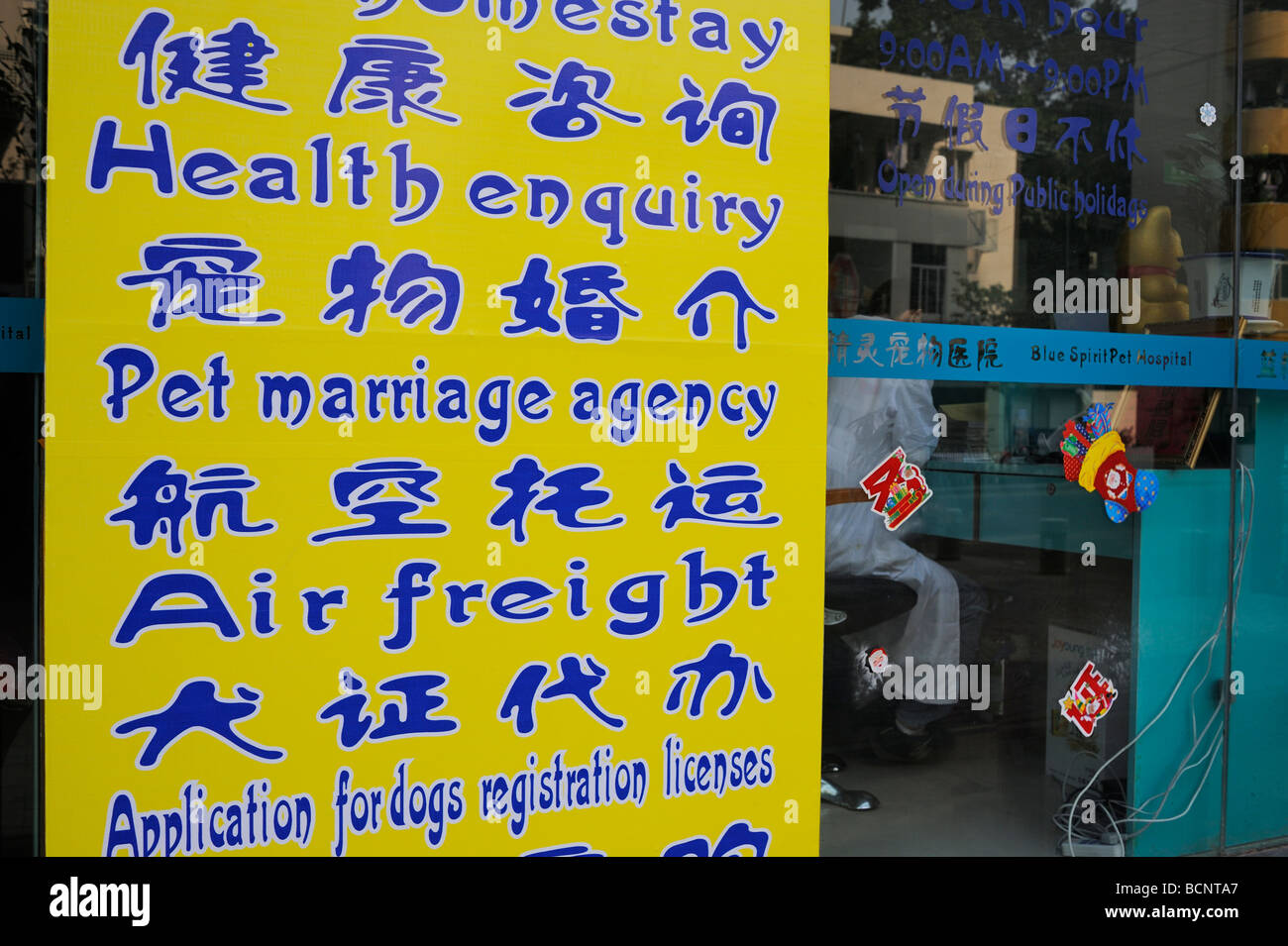 Matrimonial china agencia Amigos Gringos