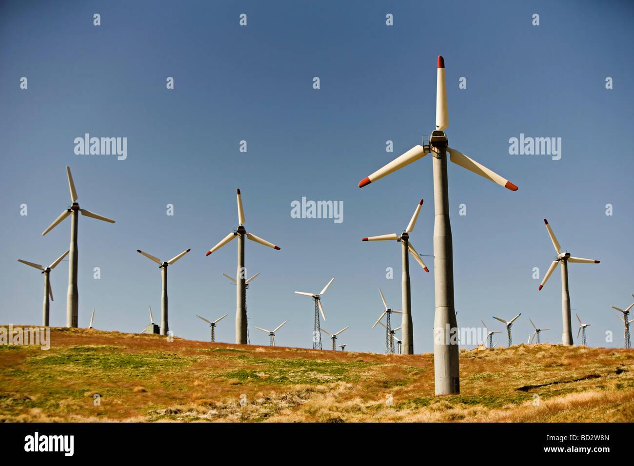Las turbinas eólicas generadoras de electricidad Foto de stock