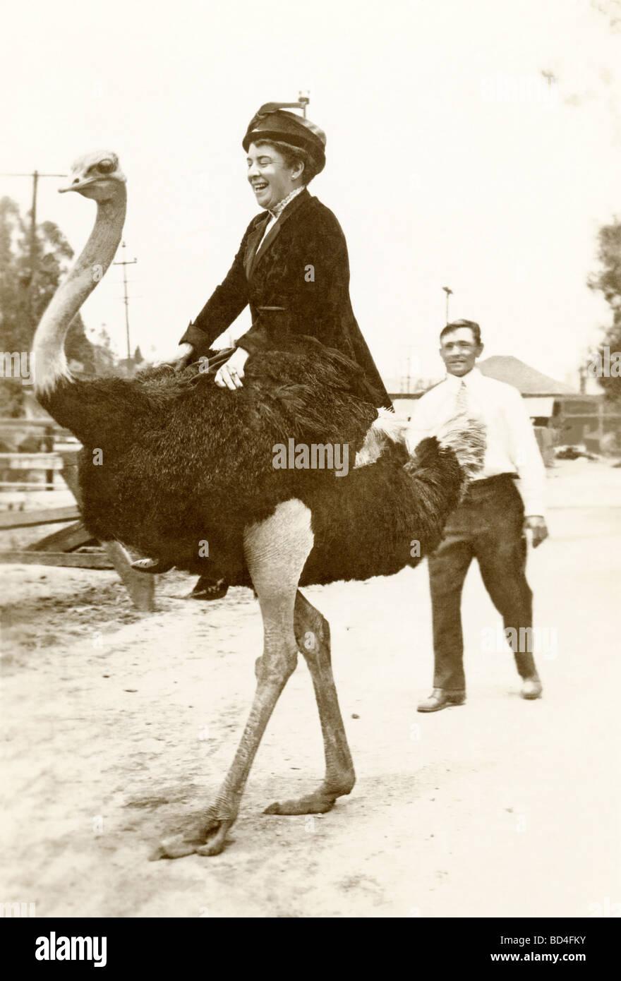Mujer montando un avestruz Imagen De Stock
