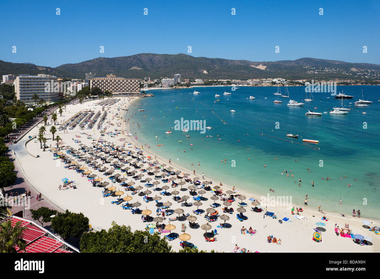 Vistas a la principal playa de palmanova bah a de palma - Mallorca islas baleares ...