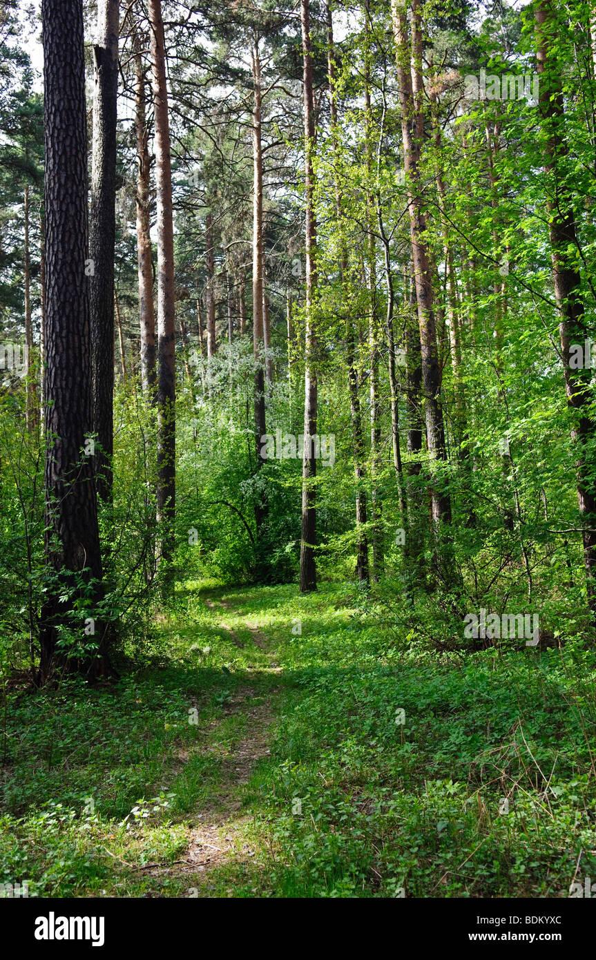 Caminata turística vacaciones viaje vertical horizontal Imagen De Stock