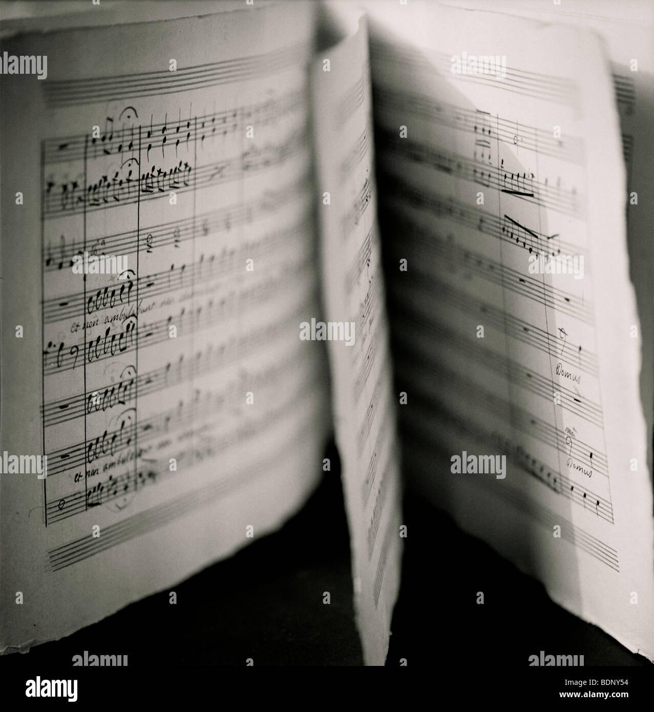 Música de la hoja Imagen De Stock