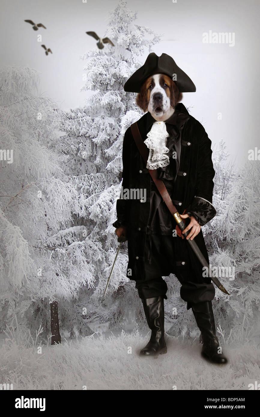 Perro surrealista vestida como un soldado Imagen De Stock