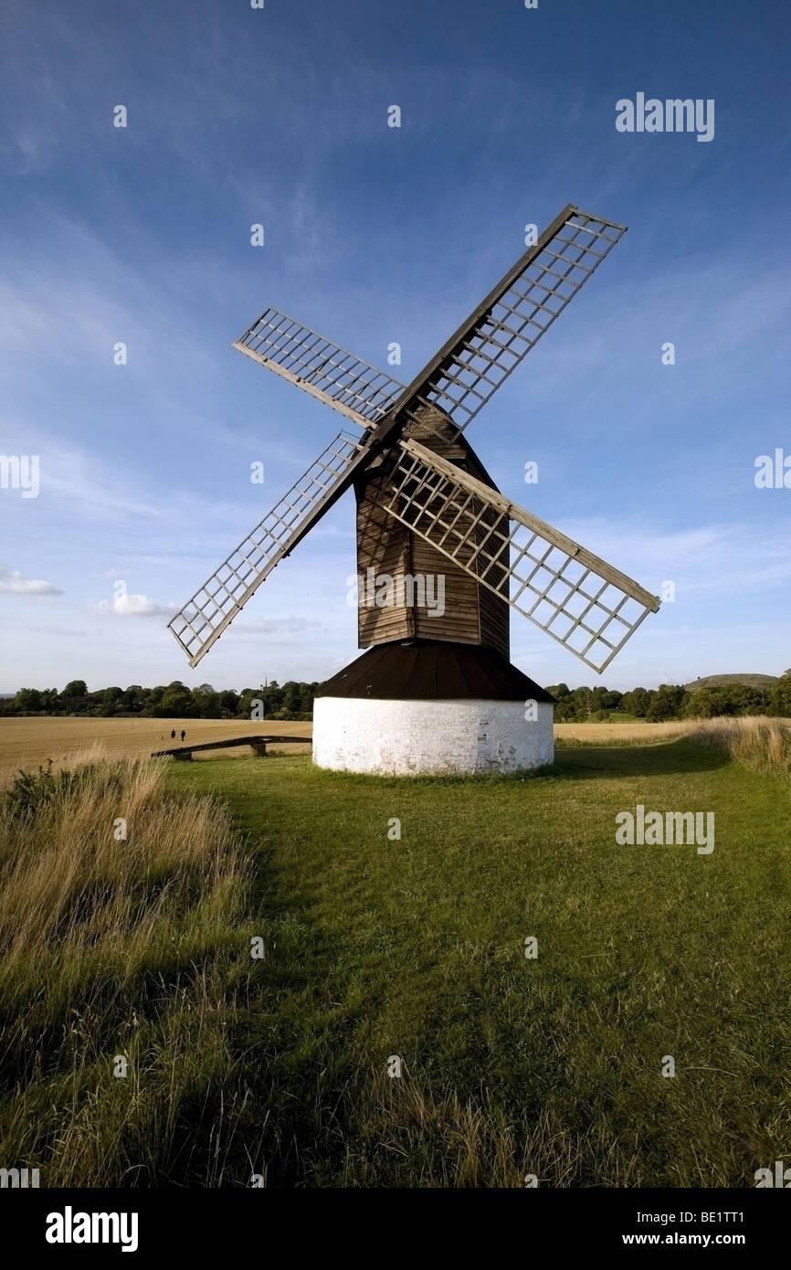 Pitstone Windmill un Fideicomiso Nacional propiedad en un campo de maíz ubicado cerca de Ivinghoe Foto de stock