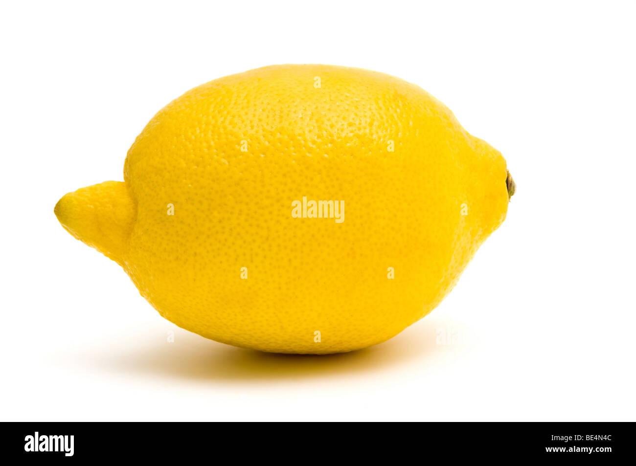 Uno de limón perfecto aislado en blanco Imagen De Stock