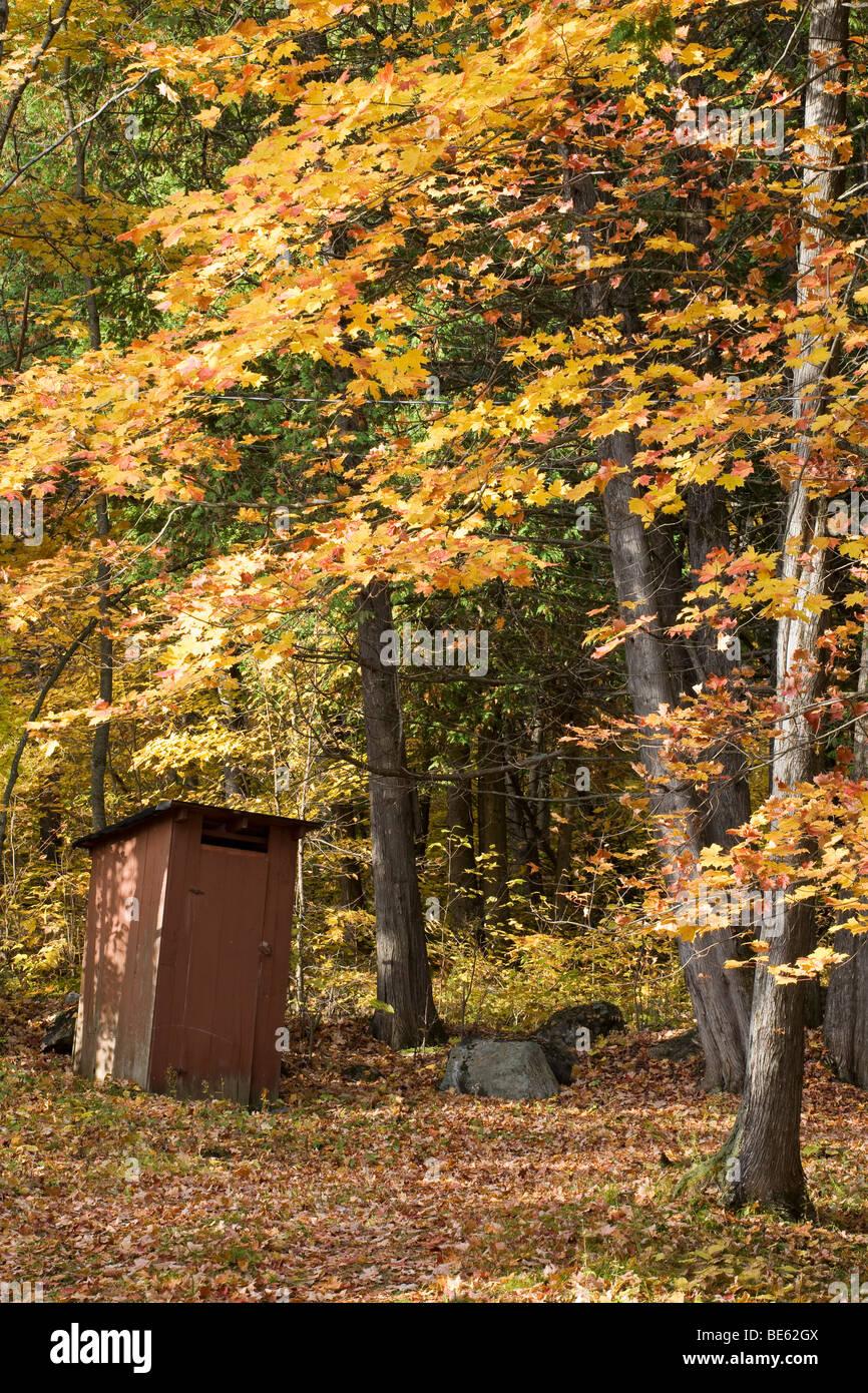 Casco de casa en el otoño. Las hojas caer un antiguo bastidor ...