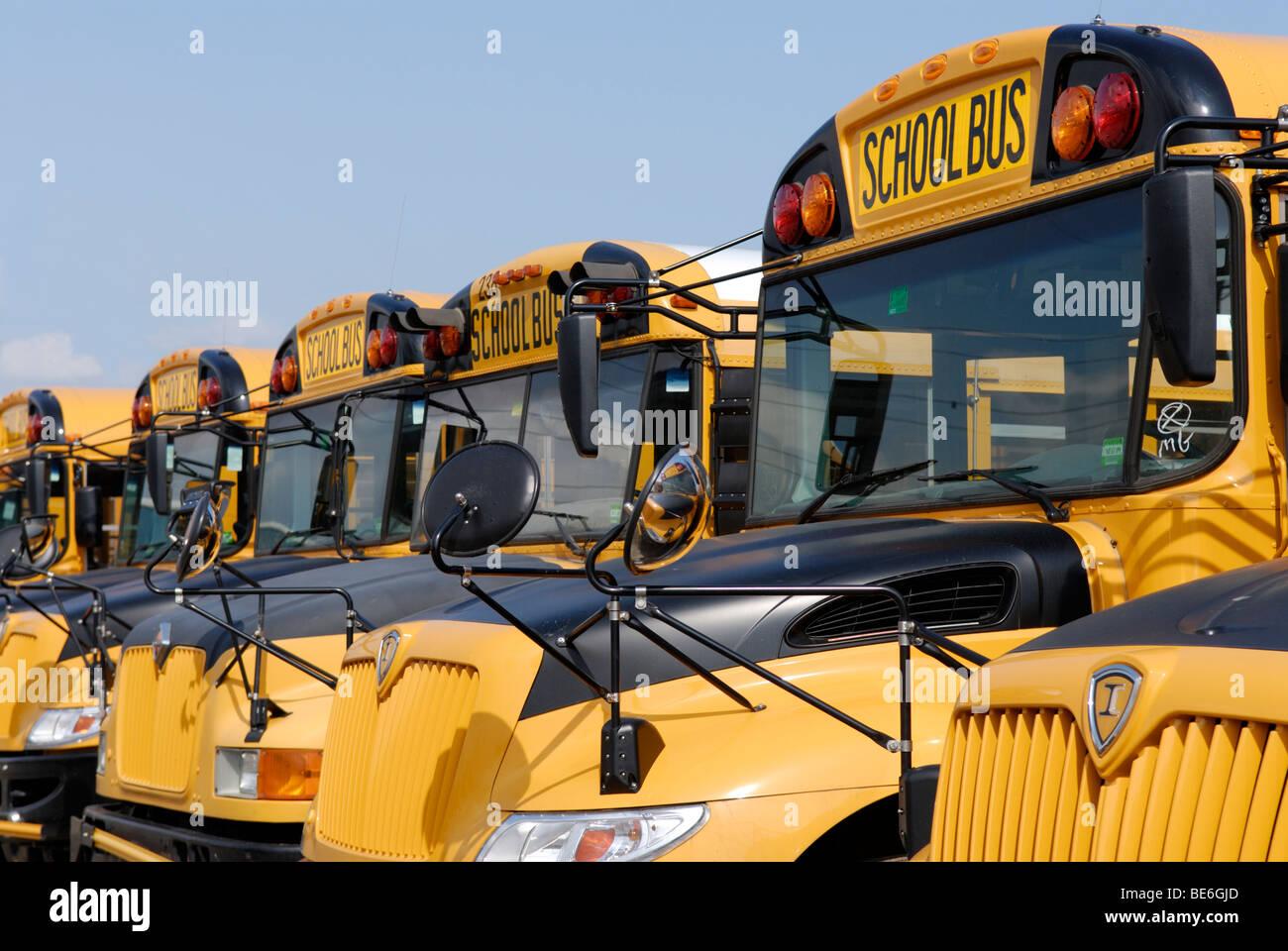 Los autobuses escolares estacionados Imagen De Stock