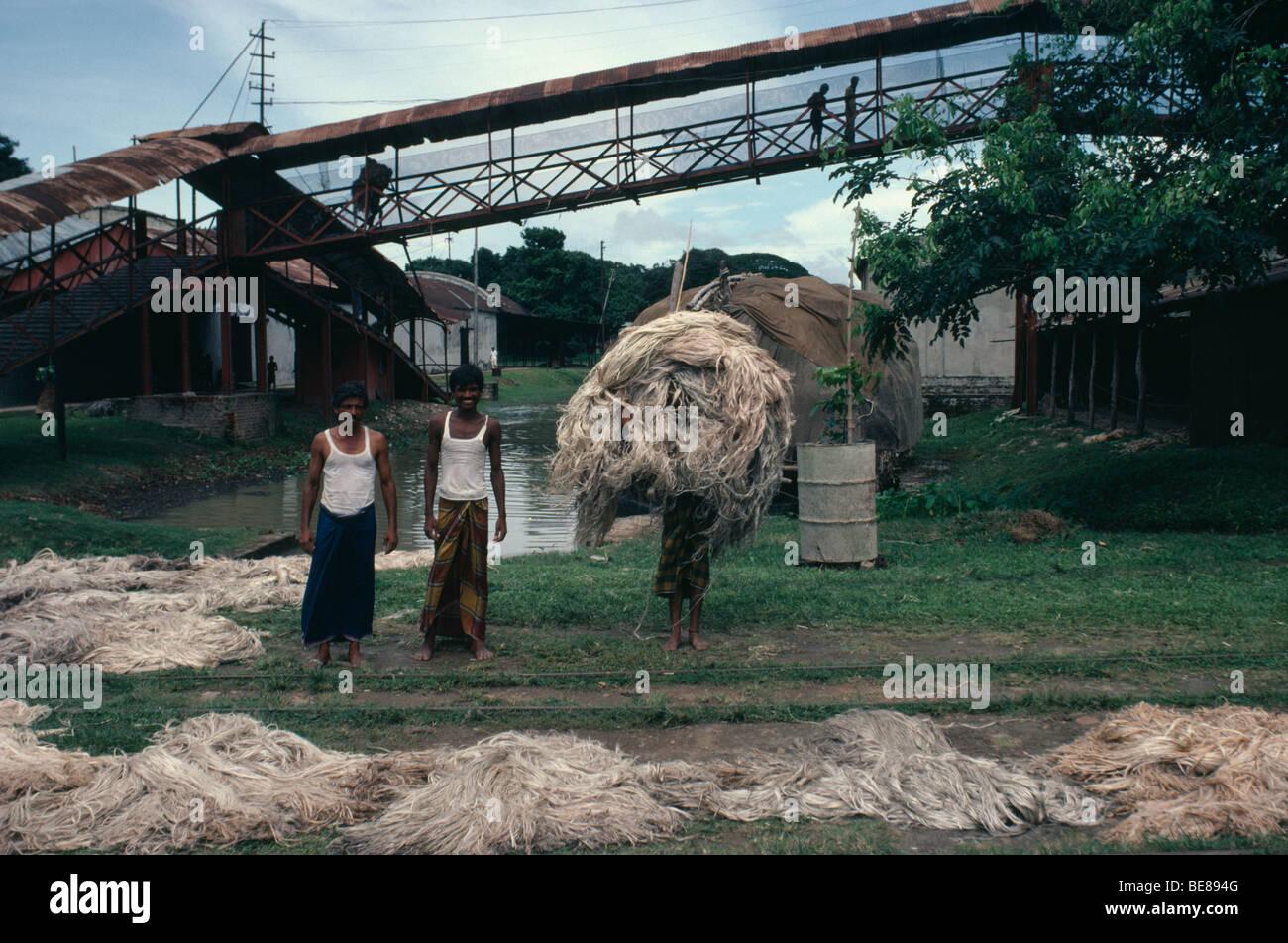 9058f5728 Sur de Asia Bangladesh yute fabricación trabajadores con fibras amontonadas  fuera de fábrica. Imagen De