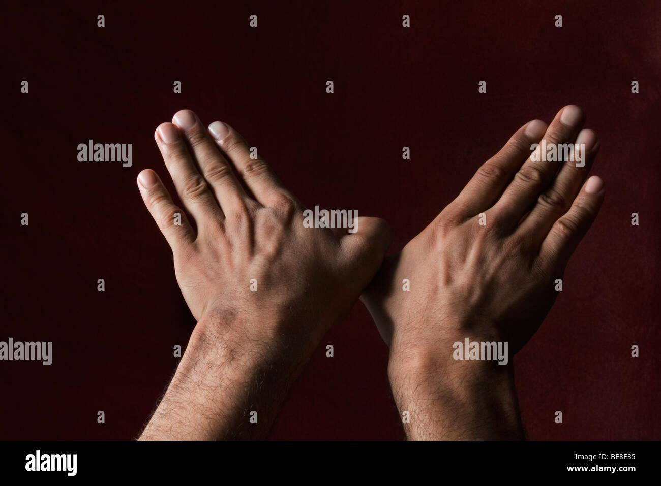 Las manos haciendo forma de aves Imagen De Stock