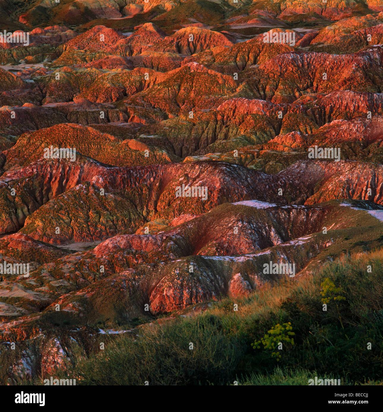 Las arcillas rojas con fósiles de montaña Kiin-Kerish paleontológica. Zaisan Depresión, Kazajstán Imagen De Stock