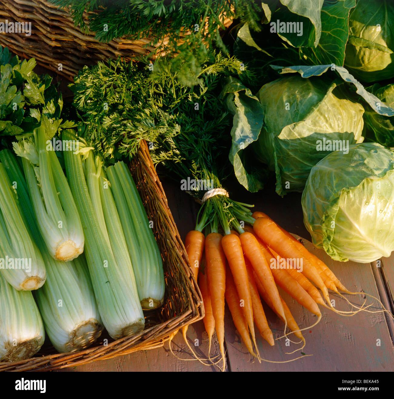 Todavía la vida de diferentes vegetales Imagen De Stock