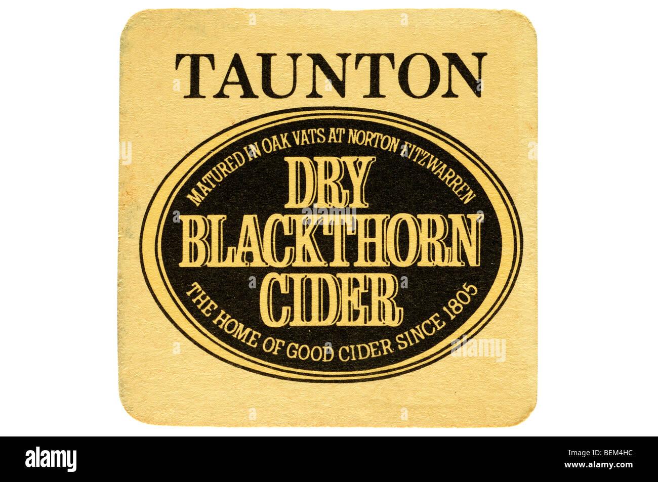 Taunton maduró en tinas de madera de roble en norton fitzwarren endrino sidra seca la casa de buena sidra desde Imagen De Stock