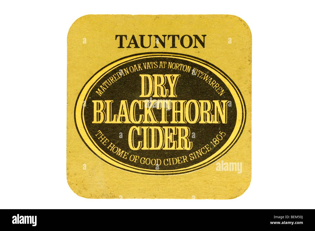 Taunton maduró en tinas de madera de roble en norton fitzwarren endrino sidra seca la casa de buena cyder desde Imagen De Stock