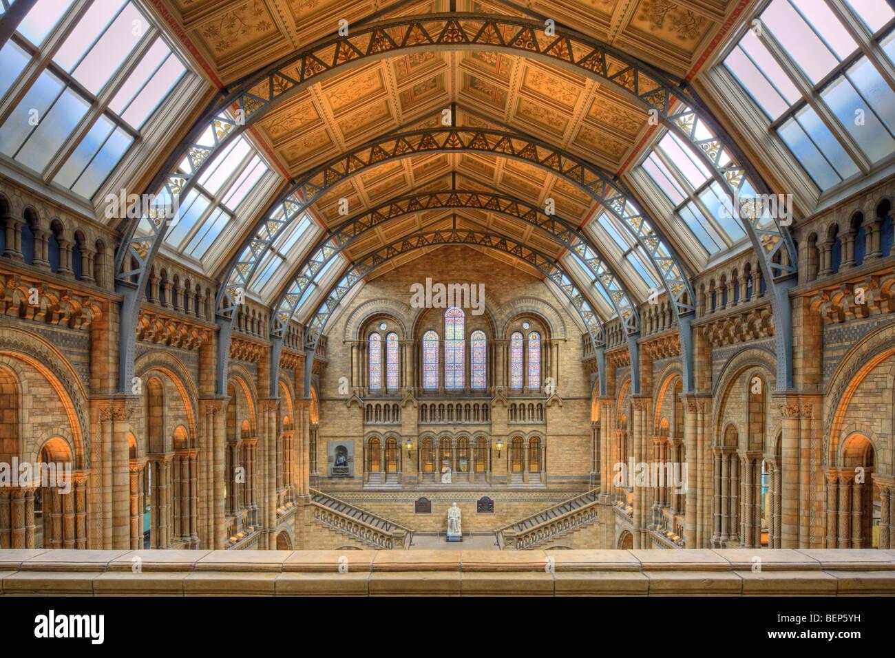 Interior del Museo de Historia Natural de Londres. Imagen De Stock