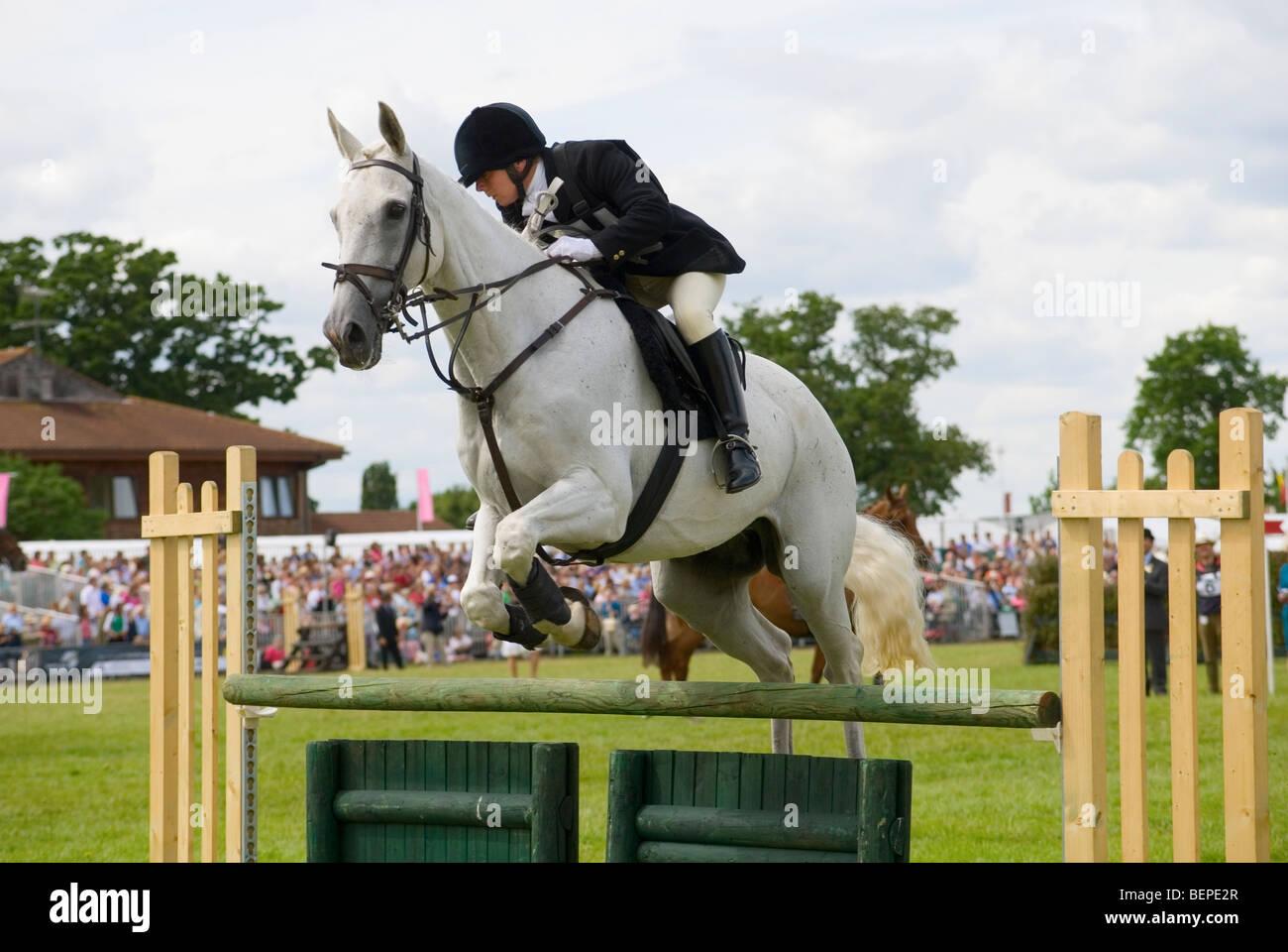 Show Jumping en el último evento Royal Show nunca Imagen De Stock